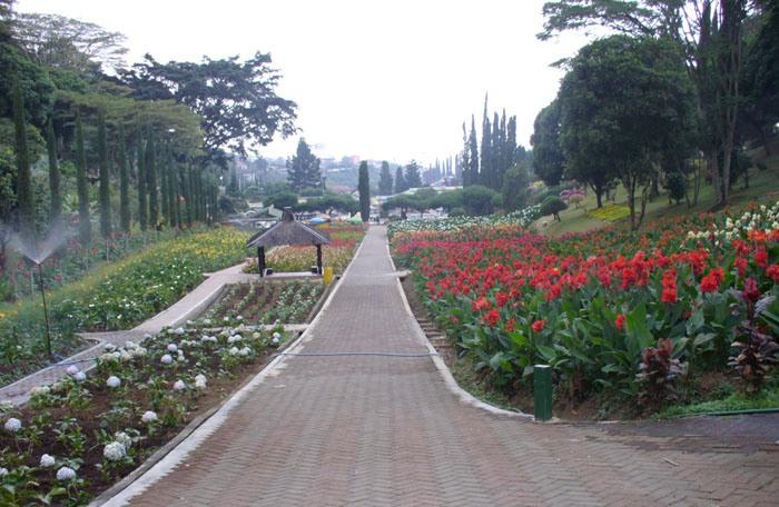 http://www.outboundindonesia.com/wp-content/uploads/2011/11/Taman-Bunga-Selecta-outbound-di-malang-www.outboundindonesia.com-081334664876.jpg