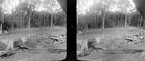 Taman Nasional, www.outboundindonesia.com, 081334664876