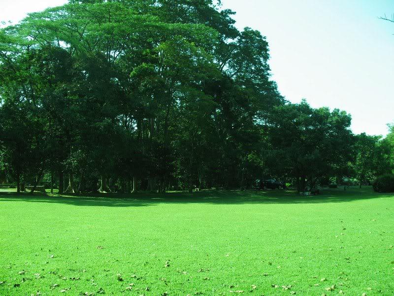 wisata edukasi kebun raya purwodadi pasuruan jawa timur, www.outboundindonesia.com, 081334664876