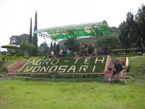 kebun teh wonosari, http://www.outboundindonesia.com/, 085755059965