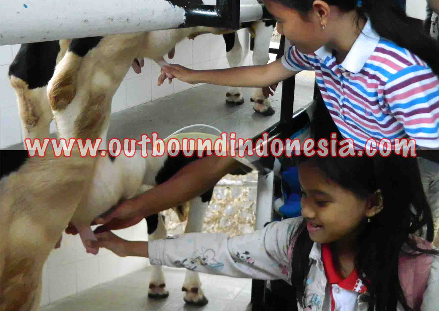 wisata edukasi bhakti alam pasuruan, www.outboundindonesia.com, 085755059965